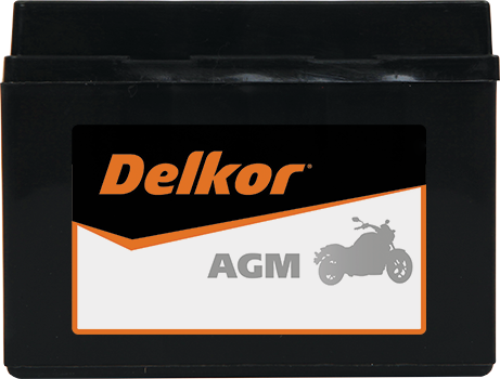 Delkor Motorcycle AGM MF DTX4L-BS