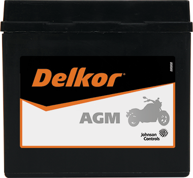 Delkor Motorcycle AGM MF DTX5L-BS