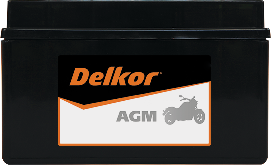 Delkor Motorcycle AGM MF DTX7A-BS
