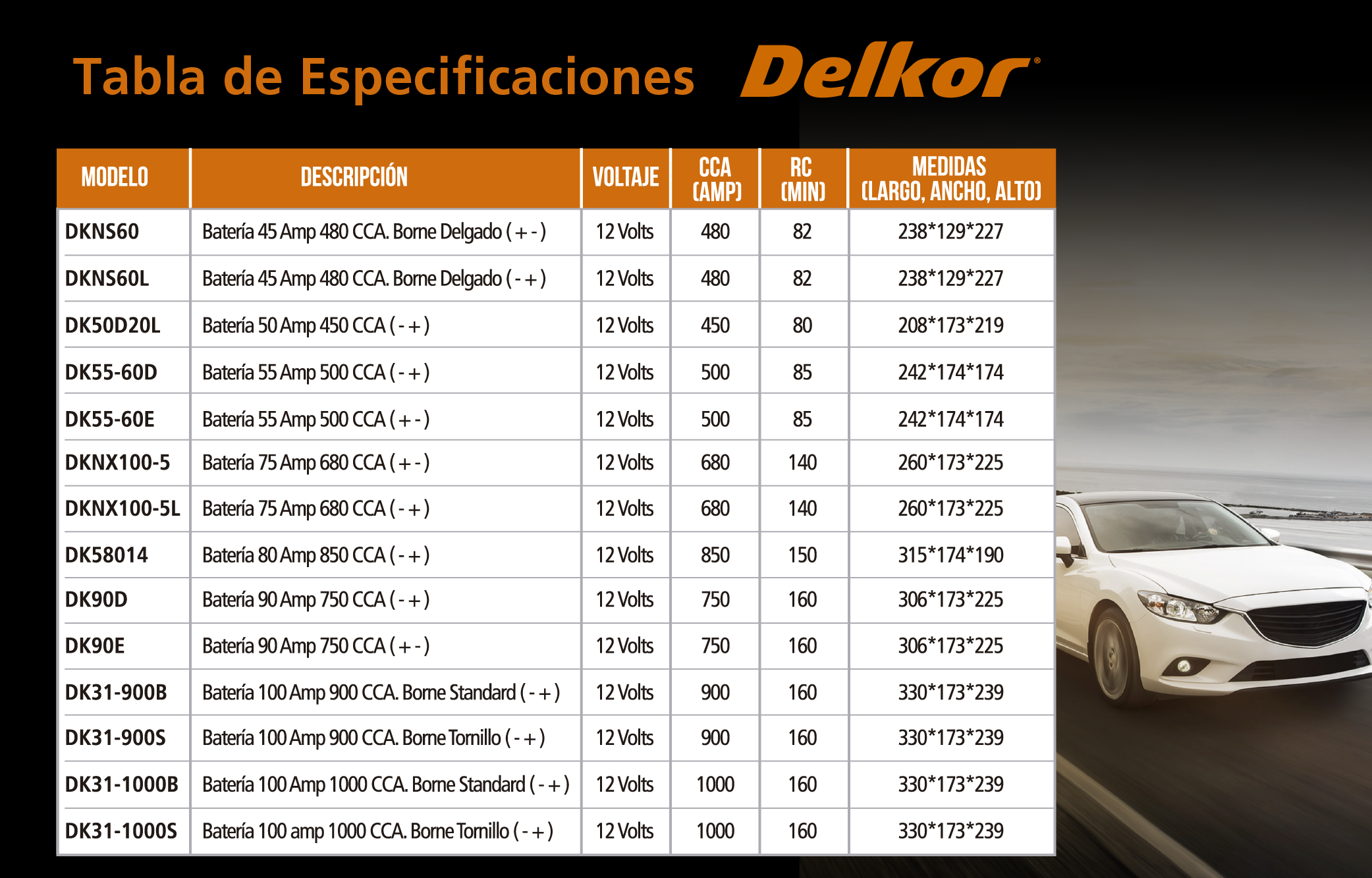 BANNERS_DELKOR-03__500_X_320_PX_300_DPI.png