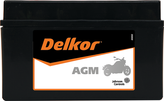 Delkor Motorcycle AGM MF DTZ10S-BS