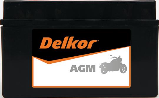 Delkor Motorcycle AGM MF DTZ10S-BS