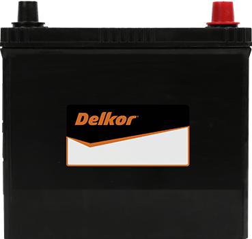 Delkor Calcium NS60LS (46B24LS)