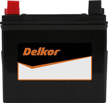 Delkor Calcium NT50-N24 (28A19R)