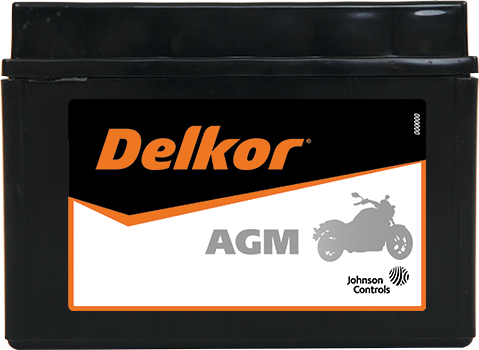 Delkor Motorcycle AGM MF DTZ14S-BS