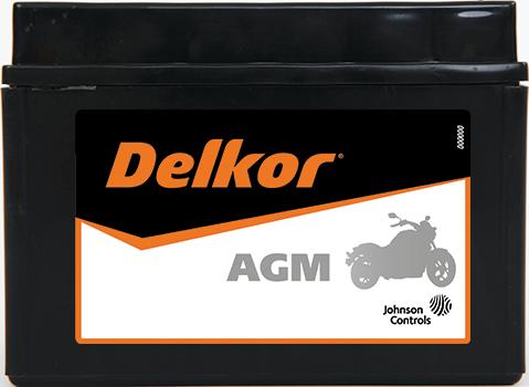 Delkor Motorcycle AGM MF DTZ14S-BS