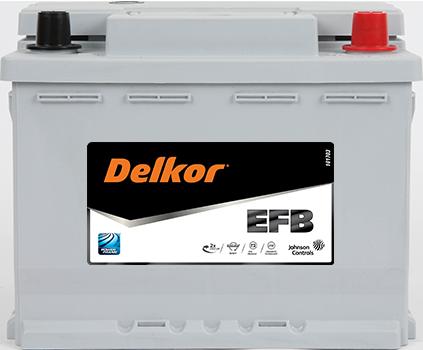 Delkor EFB LN2 - 60EFB